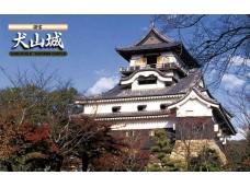 FUJIMI 1/300 城3 犬山城 富士美 500430