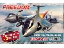 國軍 蛋機 F-104 TF-104 RF-104 可做3架不同構型 Freedom 162702